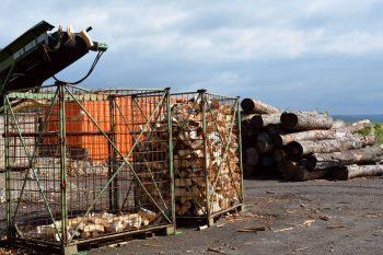 Die gleichmäßigen Brennholzscheite fallen in einen Sammelkorb. Foto: Kjell Sonnemann